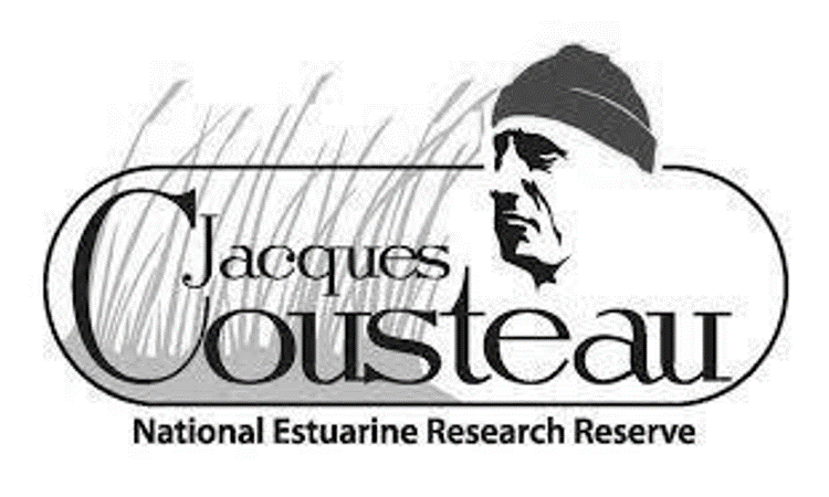 Proudly Indigenous Crafts & Designs (PIC&D) Jacques Cousteau Black and white 2